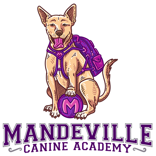 Mandeville Canine Academy